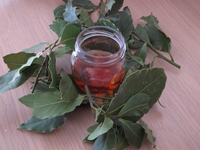 лечение алкоголизма лавровым листом отзывы