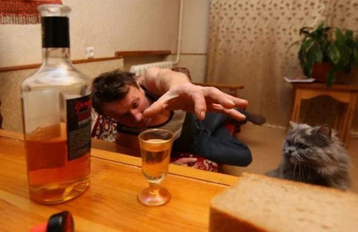 после алкоголя морозит