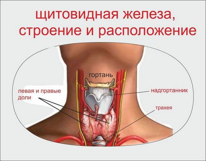 препараты гормоны для мужчин