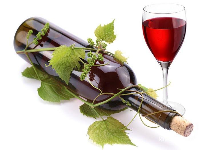 вино во время беременности