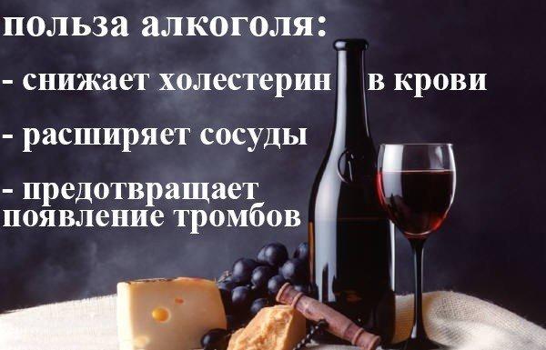 польза от алкоголя
