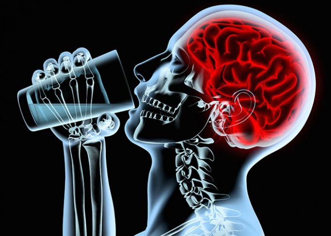 регулярное потребление алкоголя снижает работу мозга
