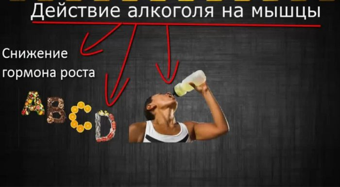 при употреблении алкоголя мышцы истощаются и ослабевают