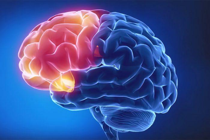 из-за кислородного голодания начинается массовая гибель нервных клеток