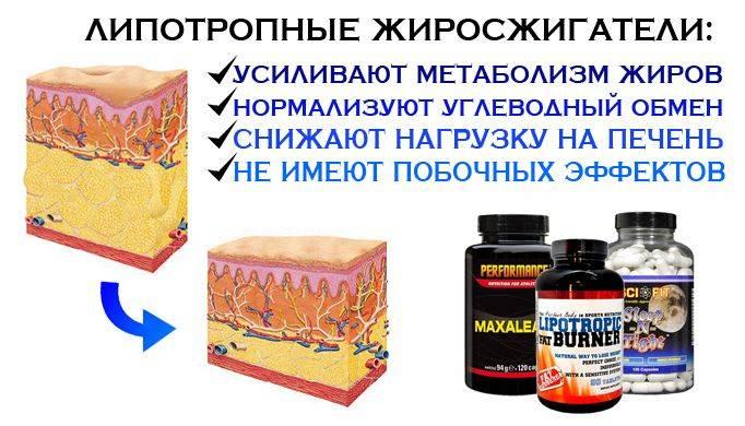 липотропные вещества