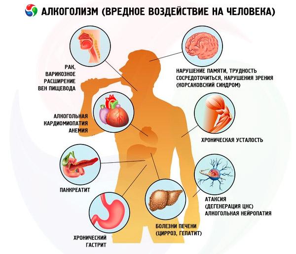 органы страдающие от алкоголя