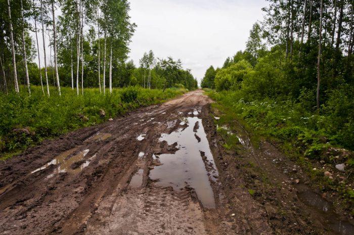 Проселочная дорога на дачу