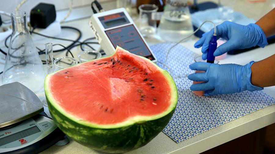 преимущества и недостатки продуктов ГМО